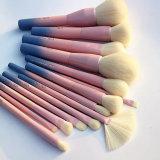 Conjunto de cepillo magnético del maquillaje del color de rosa 14PCS del pelo de gama alta de la cabra