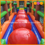 Juego de la diapositiva de Iflatable del obstáculo de la esfera de los Cocos para la venta barata (AQ16213)