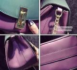 공장 싼 가격 숙녀 Sy8175를 위한 사슬을%s 가진 새로운 도착 어깨에 매는 가방 PU 대조 색깔 핸드백