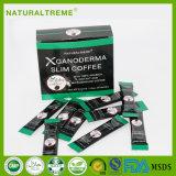 Extrait 2 de Ganoderma Lucidum dans 1 poudre noire de Koffie