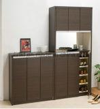 Kabinet van het Edelhout van de Schoen van het Meubilair van de woonkamer het Moderne (Ul-WR008)