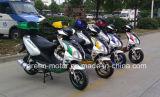 125cc150cc/50cc 가스 스쿠터, 스쿠터 (Voletta)