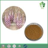 Tache de rousseur blanchissant le 5:1 ~20 d'extrait d'Acteoside Cistanche Tubulosa : 1