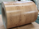 Modèle en bois de vente chaude populaire avec la bobine en acier de l'épaisseur PPGI/PPGL de 0.13-1.2mm