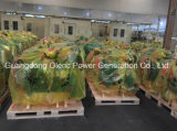 Der Guangdong-Olenc Lieferant Stromerzeugung-Co Genset mit zweijähriger Garantie