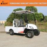 Großverkauf 2 Seaters elektrische Transport-Karre, kleiner Transport kundenspezifisches Golf-Auto