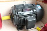 Мотор AC серии Y2 трехфазный