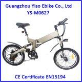 Montagne pliable Ebike se pliant électrique de vélo électrique chaud neuf