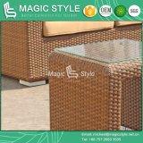Sofa réglé de combinaison de sofa de sofa de jardin de rotin de sofa de sofa en osier réglé de patio (TYPE MAGIQUE)