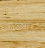 Natürliche rustikale Fußboden-Steinfliese