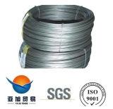 SAE1008 fil d'acier laminé à chaud déformé Rod