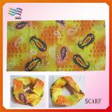 Sciarpa lunga molle di colore differente con la nappa con il marchio stampato (HY-L01)