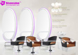 De populaire Stoel Van uitstekende kwaliteit van de Salon van de Kapper van de Shampoo van het Meubilair van de Salon (P2043)