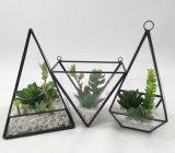 El vidrio modelo artificial del cono florece el Succulent Potted de las plantas