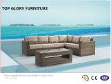 Sofá al aire libre del ocio de la manera de mimbre al aire libre de los muebles (TG-800)