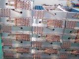 Hochleistungs--Abkühlung-Kondensator