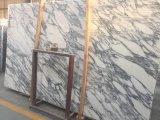 浴室のためのArabascataの大理石の白い大理石