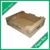 Caixa de empacotamento da impressão feita sob encomenda para a embalagem da fruta