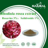 Poeder Rosavin van het Uittreksel van Rhodiola Rosea van het Uittreksel van de Installatie van 100% het Natuurlijke
