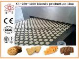 Cer genehmigte Biskuit-Fabrik-Gebrauch-Biskuit-Maschine