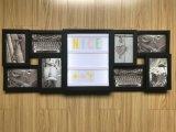 Frame do diodo emissor de luz da decoração, frame da foto