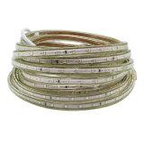 luz impermeable de la cinta de 220V SMD2835 los 60LED/M LED con el enchufe de la UE