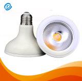 E27 B22 230V LEIDENE van PAR30 12W Lamp