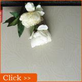 Spiegel-Polierfliesen 600X600 für Gaststätte-Fußboden