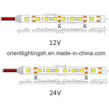 UL SMD 5050 60 LEDs/M IP43 Nonwaterproof 24V, striscia del LED