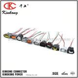 Harnais de câblage automobile de tresse/harnais de câbles