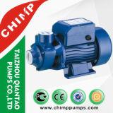 0.5HP 소형 가정 사용 Qb60 와동 수도 펌프