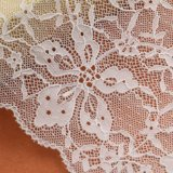 Échantillon gratuit Fancy Design Chemical 3D Lace