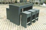 Штанги Florance ротанга патио сада мебель Wicker напольной установленная (J691)