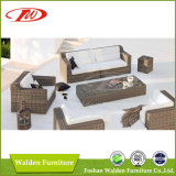 Presidenza esterna della mobilia del rattan/presidenza del rattan (DH-N9061)