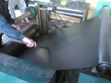 De alta calidad de lámina flexible de grafito con Tanged