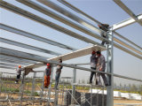 Prefab Steel Structure Seal e Open Chicken House