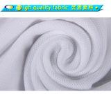 광저우 제조자 공백 평야 Pima 면 남녀 공통 폴로 셔츠