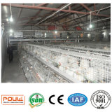 Цыплятина арретирует клетку цыпленка бройлера самого лучшего качества автоматическую для птицефермы