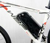 2016新しい経験36V電池Eのバイクの電気自転車