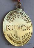 Medalha do prémio de mérito para a matemática de Kumon e o centro da leitura