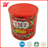 Colar de Alta Qualidade de tomate (enlatado 2,2 kg) com Tmt Marca