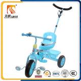 Driewieler van de Jonge geitjes van het Frame van het Metaal van het Ontwerp van de Fabriek van het Speelgoed van de Auto van de Kinderen van Tianshun van Hebei de Eenvoudige met de Staaf van de Duw