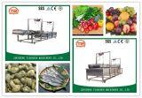 Rondelle électrique de pression pour le légume et le fruit Tsxc-50