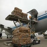 De huis-aan-huis Dienst van de Logistiek van Shanghai aan Maleisië