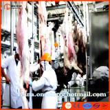 Schaf-Schlachtlinie-Schlachthaus-Ziege-Schlachten-Maschine