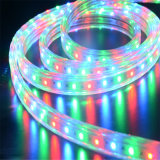 Tira del alto voltaje 220V los 4W/M SMD3528 LED de Decoratiom del día de fiesta