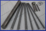 Fábrica de suprimentos Carburos Cimentados Rods / Cimento sólido / Tongsten Carbide Rod / Round Bar / Soldagem / Brazing Rod Blanks / Solid Rods