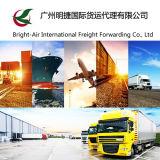 Service de distribution exprès de fret de courier de Federal Express de tambour de chalut de colis de Chine dans le monde entier (l'Ukraine)