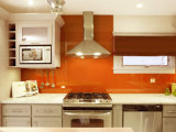 Color Pattern Printed Glass Kitchen Wall Splash Back Glass