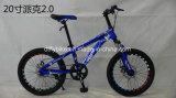 20inch bicicleta do frame de aço MTB, bicicleta da velocidade do Sigle,